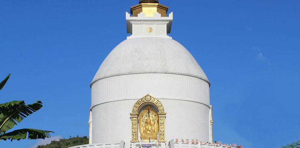 Buddha Circuit 1290